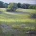 Poirson - Lumiere sur la prairie.jpg