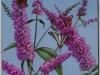 Wittwer -Buddleia et papillons - 595x355.JPG