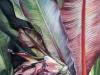 Cauchois - La bananeraie (50 x 70 cm)_01