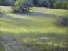 Poirson - Lumiere sur la prairie
