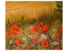 Benoist Odile - coquelicots juste a nos pieds_01
