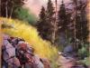 11 P Henry - balade en montagne