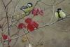 l'automne au jardin_01.JPG